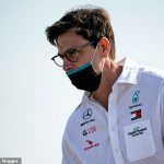 'We have done nothing wrong': Mercedes chief Toto Wolff says they are prepared to go to court to 'protect their reputation' amid Racing Point brake duct row