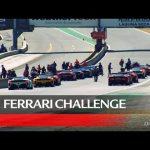 Ferrari Challenge North America – Laguna Seca 2020, Trofeo Pirelli and Coppa Shell Race 2