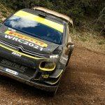 Mikkelsen completes Pirelli testing