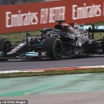 Frustrated Lewis Hamilton accepts he was partly at fault for poorly-timed pit stop that saw him finish fifth at Turkish Grand Prix after raging with his team and defying Mercedes' orders to come in