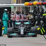 Lewis Hamilton was heading for a 'DISASTER' and would have 'tumbled down the order' further than his fifth-place finish had he not pitted at the Turkish GP, claims F1 chief Ross Brawn